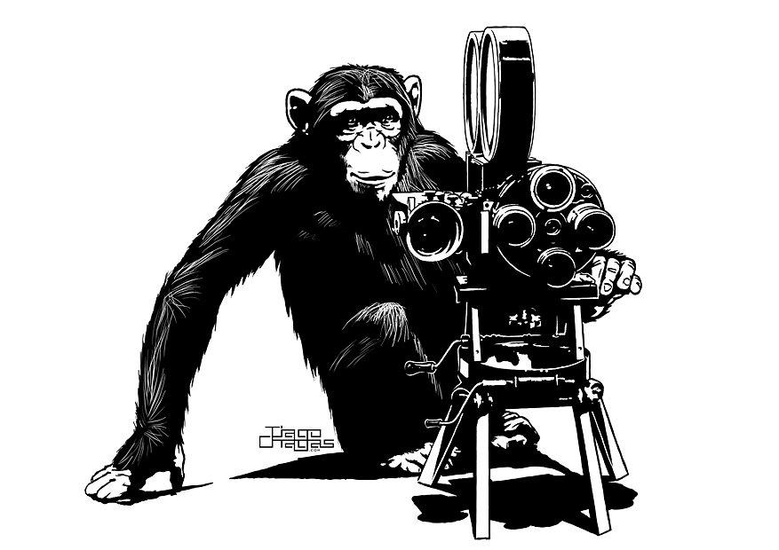chimp-director.jpg