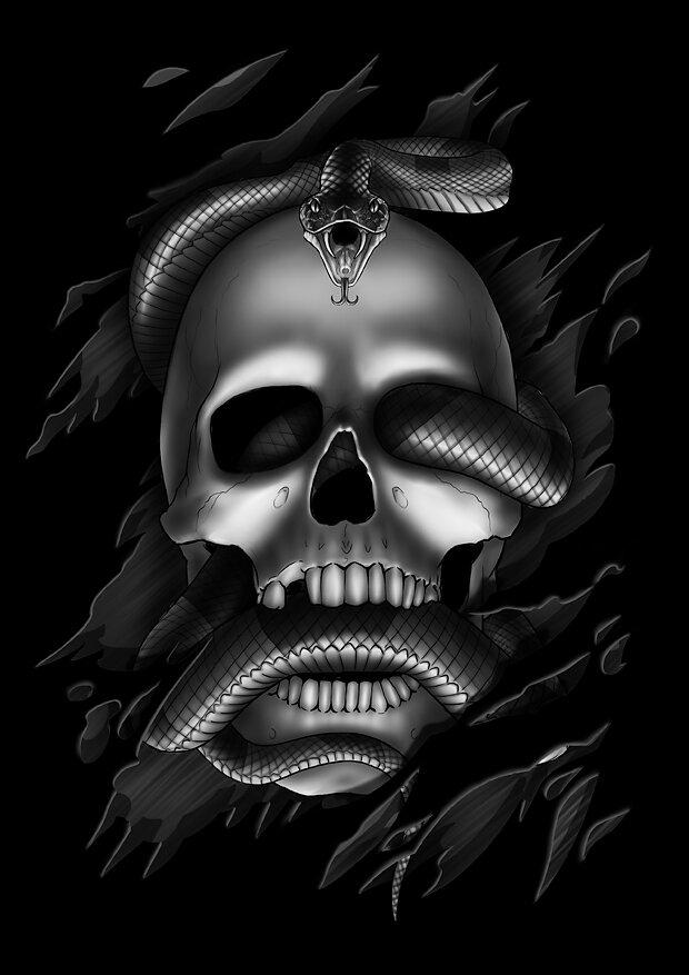 003-skull.jpg