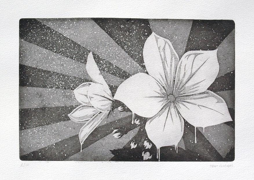 Prints / Engraving