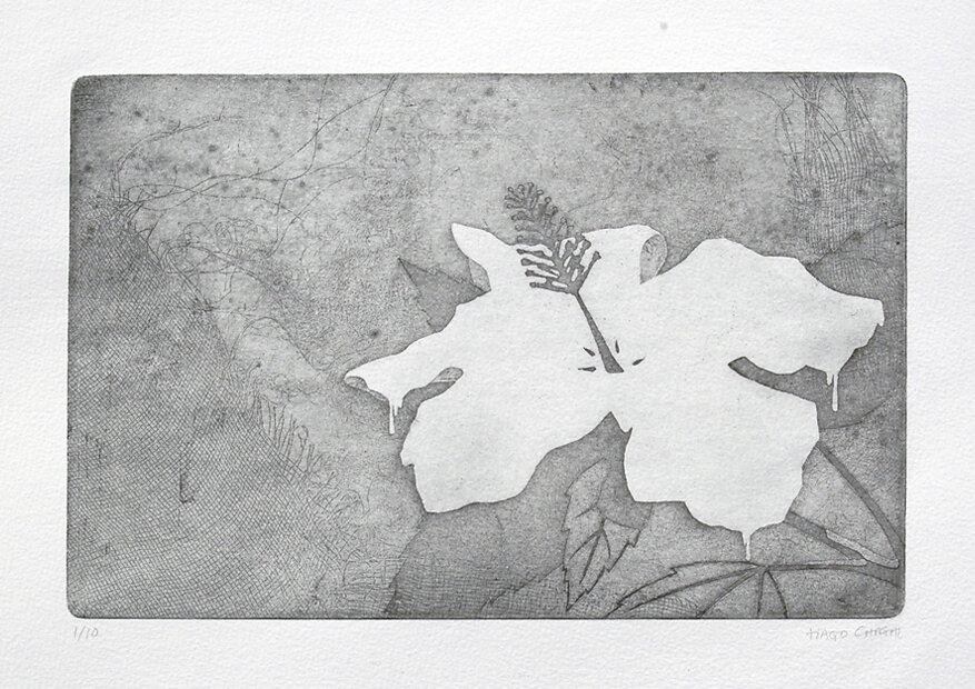 003-flower-print.jpg