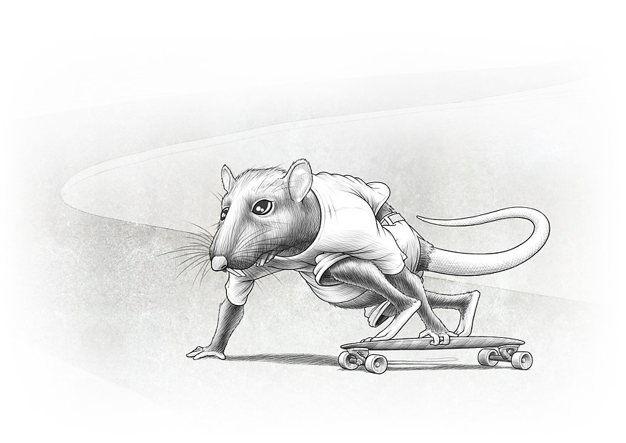 Asphalt rat