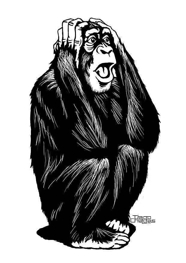 dispaer-chimp.jpg